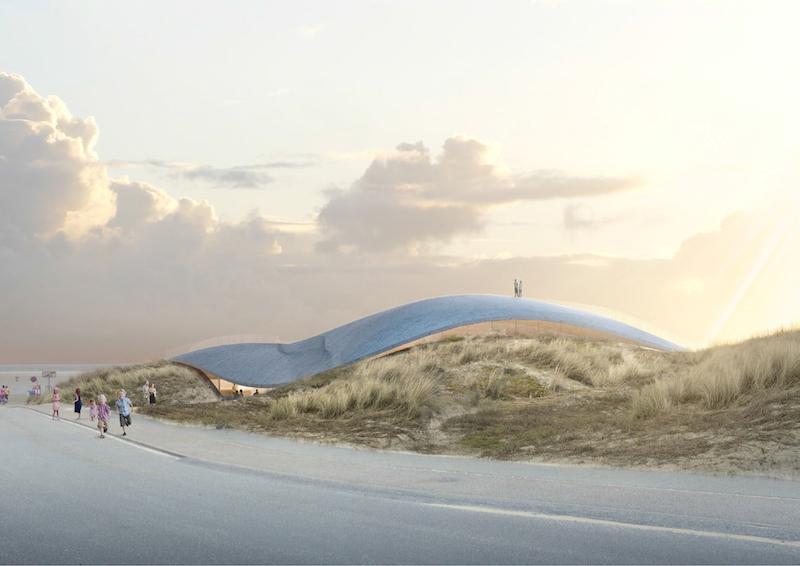 Lycium set fra vejen ved Fanø Bad.
