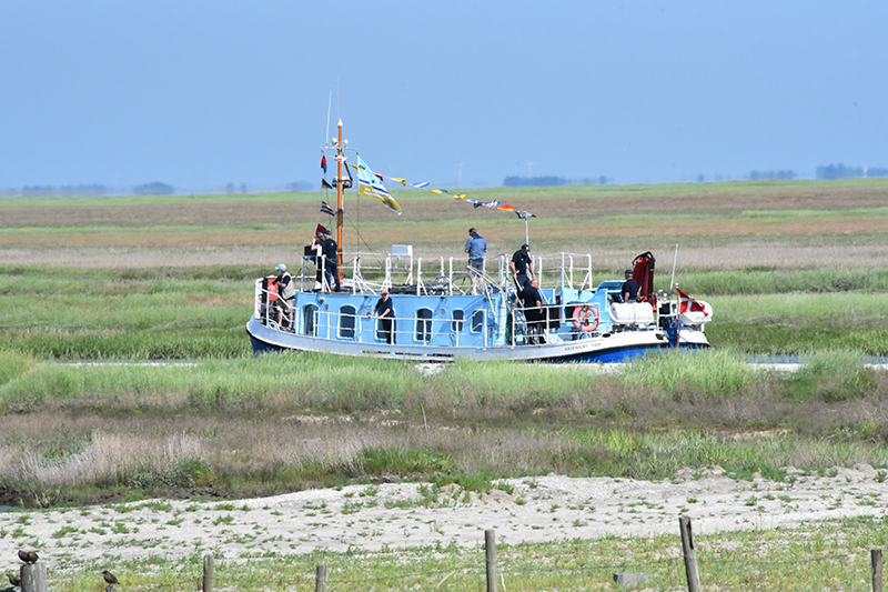 Efter de indledende festligheder kunne 15 heldige deltagere komme på sejlads med Nationalparkens skib, Vadehavet.